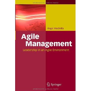 /agile-management-medinilla