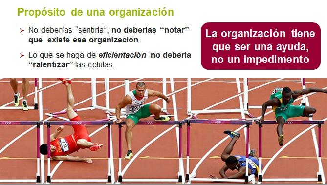 CAS2014-05-proposito-organizacion