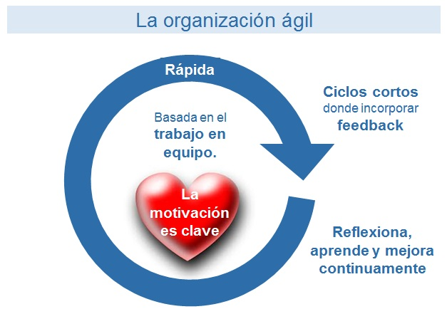 empresa-agil-principios