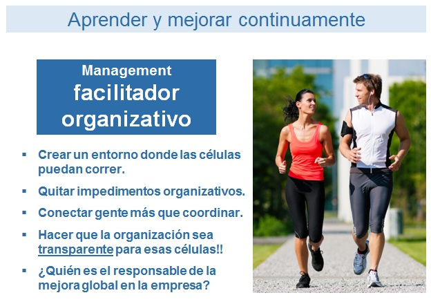 manager-facilitador-organizativo