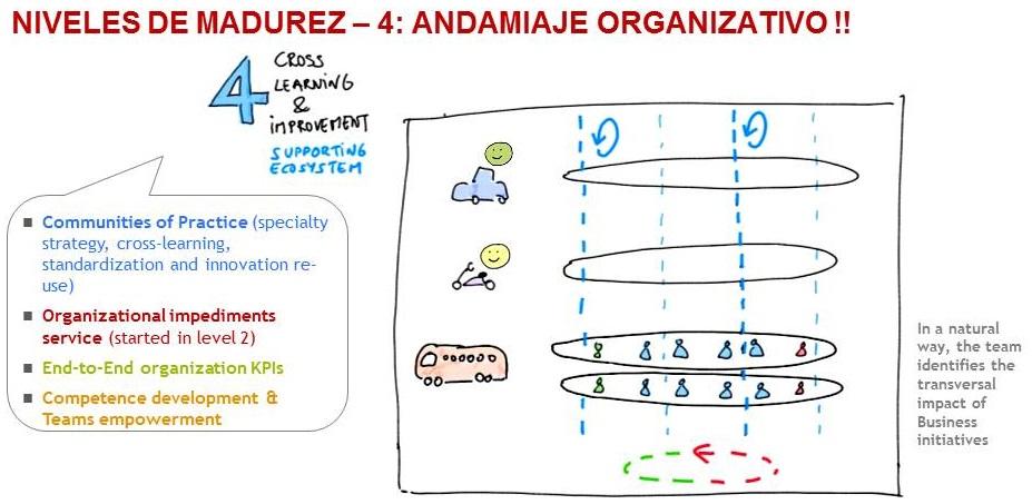 4-2-andamiaje_organizativo