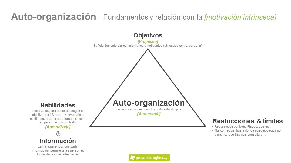 Auto-organización - self-management
