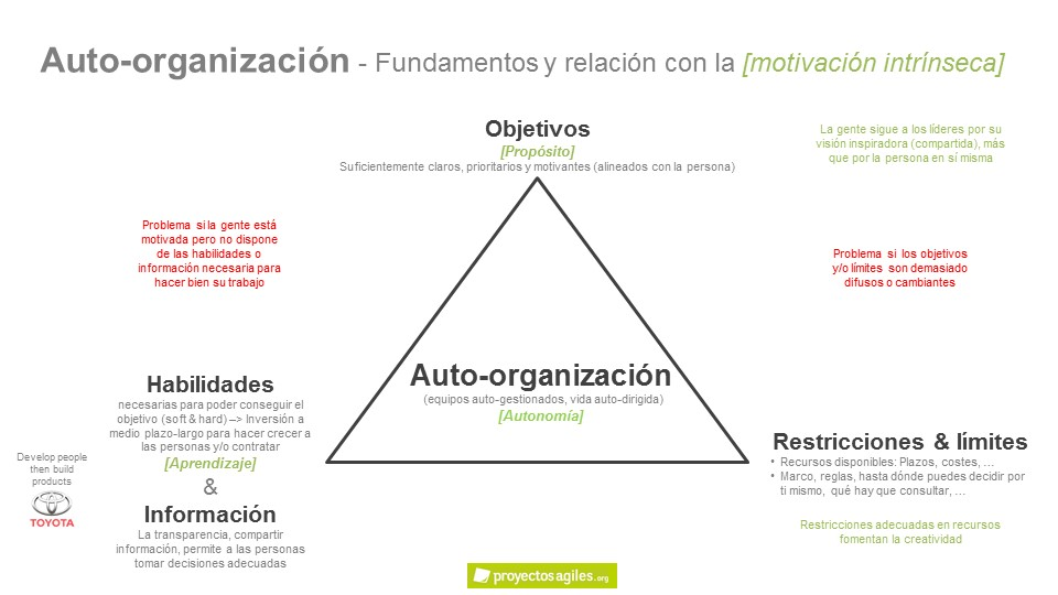 Auto-organización - Factores negativos
